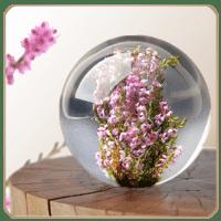 Цветы в шаре