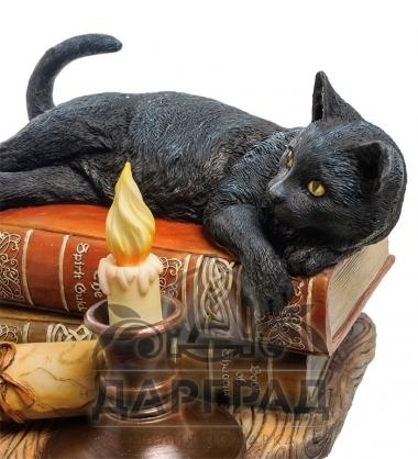 """Композиция """"Кот на книгах"""" в подарок женщине"""