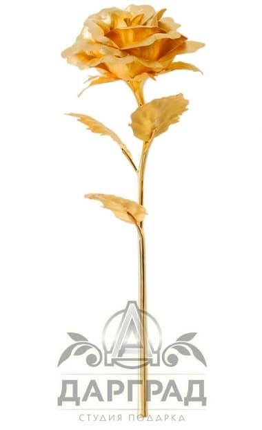 Золотая роза (распустившийся бутон) в интернет магазине СПб