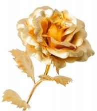 Золотая роза (распустившийся бутон) в магазине подарков Дарград